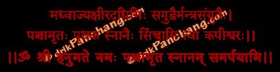 Panchamrita Snanam Mantra in Hindi