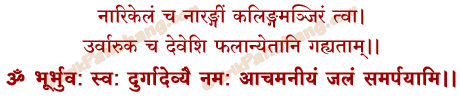 Narikela Samarpan Mantra in Hindi