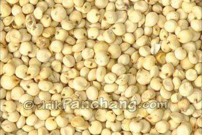 Kangani Seed